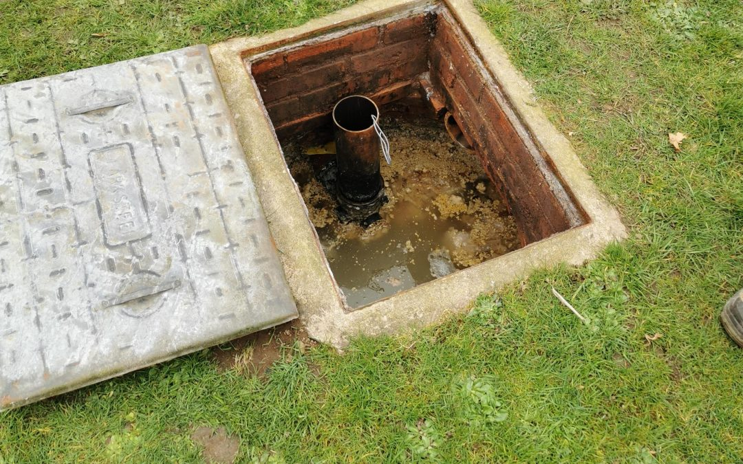 Key Signs Your Septic Tank Needs Maintenance
